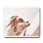 New Orleans cemetery Mousepad