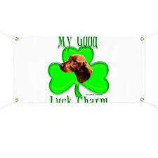 Setter Irish 1 Banner