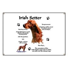 Irish Setter 1 Banner