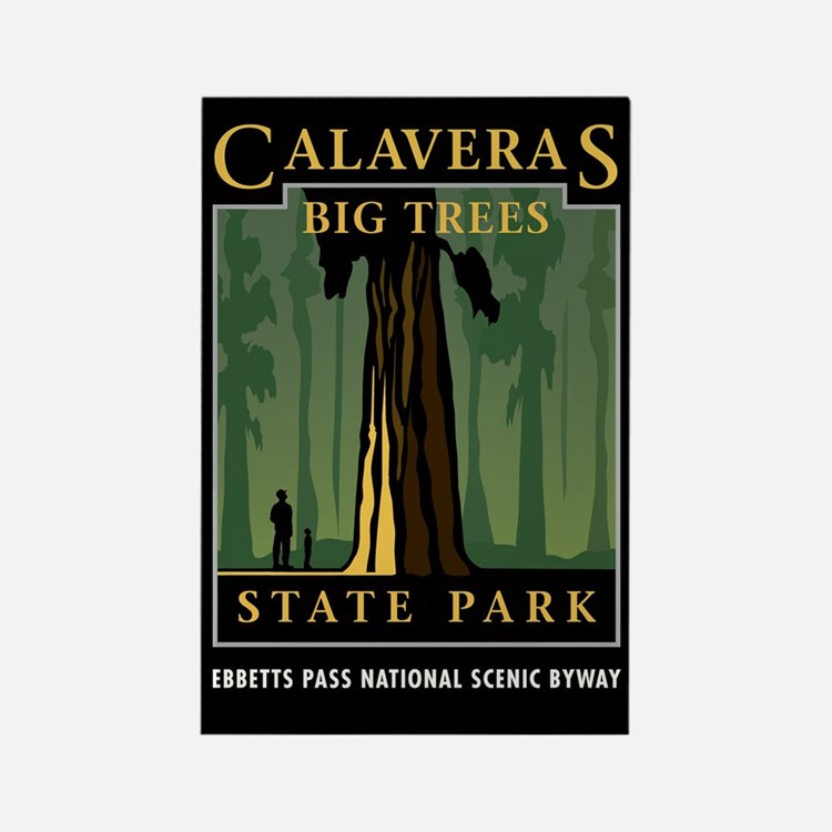 Calaveras Big Trees - Rectangle Magnet