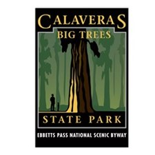 Calaveras Big Trees - Postcards (Package of 8)