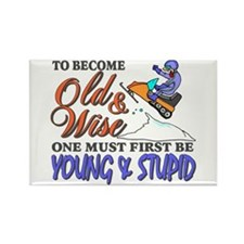 Old & Wise = Young & Stupid Rectangle Magnet