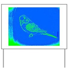 Blue and Green Parakeet Yard Sign