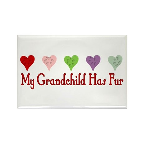 Furry Grandchild Rectangle Magnet (10 pack)