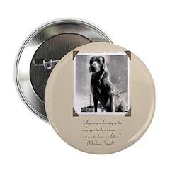 Old Hound Dog 2.25