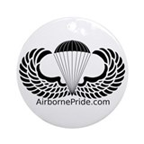 101st airborne Ornaments