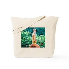 Meerly a Meerkat Tote Bag