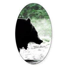 Bear Head Silhouette Oval Decal
