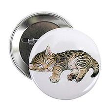 "Cat Nap 2.25"" Button (100 pack)"