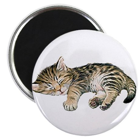 "Cat Nap 2.25"" Magnet (10 pack)"