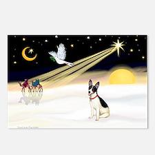 XmasDove/Rat Terrier 1 Postcards (Package of 8)