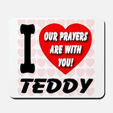 I Love Teddy Kennedy Mousepad