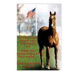 Save America's Horses Postcards (Package of 8)