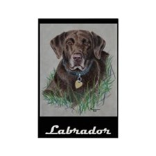 Nip, Chocolate Labrador Rectangle Magnet (100 pack