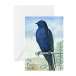 Purple Martin bird Greeting Cards (Pk of 10)