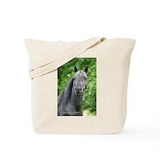 Unique Coleman Tote Bag