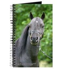 Funny Coleman Journal