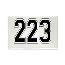 223 Rectangle Magnet