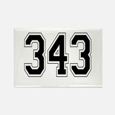 343 Rectangle Magnet