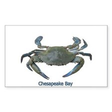 Chesapeake Bay Blue Crab Rectangle Decal