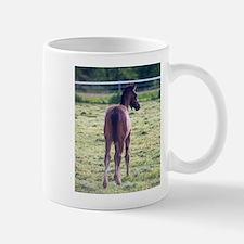 Rainier Mug