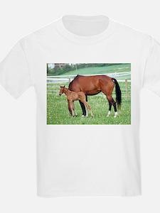 Swedish Warmblood Filly and Dam T-Shirt