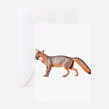 Gray Fox Animal Lover Greeting Cards (Pk of 10)