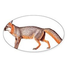 Gray Fox Animal Lover Oval Decal