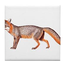 Gray Fox Animal Lover Tile Coaster