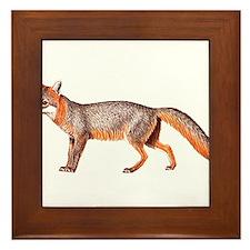 Gray Fox Animal Lover Framed Tile