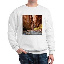 Cute Zion Sweatshirt