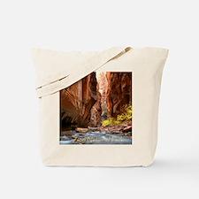 Unique Cliff Tote Bag