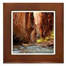 Unique Zion Framed Tile