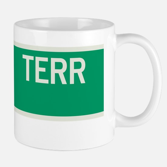 River Terrace in NY Mug