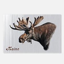Big Moose Postcards (Package of 8)