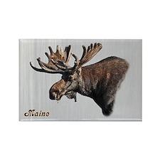 Big Moose Rectangle Magnet