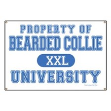 Bearded Collie U. Banner