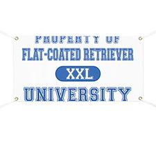 F.C.R. University Banner