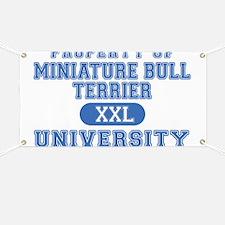 M.B.T. University Banner