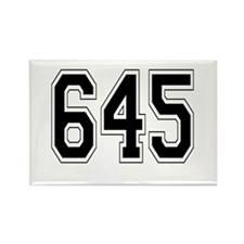 645 Rectangle Magnet (10 pack)