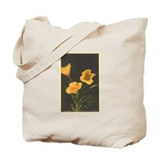 Carry It!  California Poppies