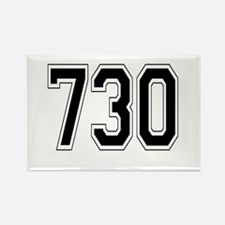 730 Rectangle Magnet