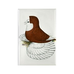 English Trumpeter Red Bald Rectangle Magnet