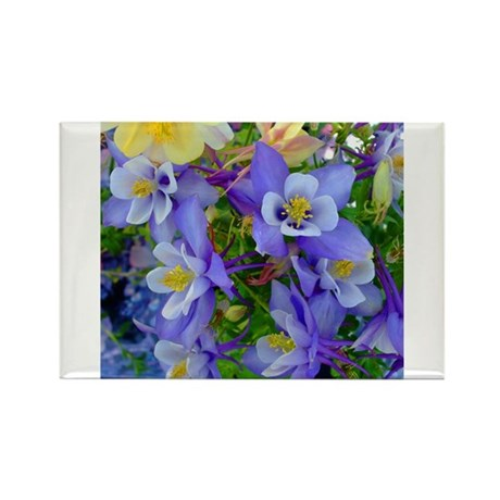 Columbine Flowers Rectangle Magnet (10 pack)