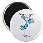 Stork Visit Boy Magnet