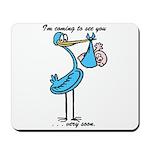 Stork Visit Boy Mousepad