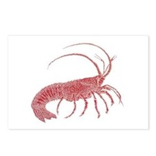 Lobster Postcards (Package of 8)