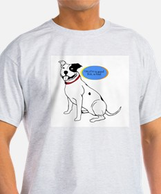TRUTH is good BSL is bad Ash Grey T-Shirt