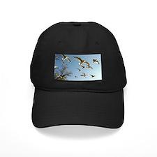 The Seagulls of Washington D.C. Baseball Hat