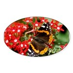 Red Admiral Butterfly Oval Sticker (10 pk)
